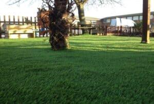 Luxury Artificial Grass