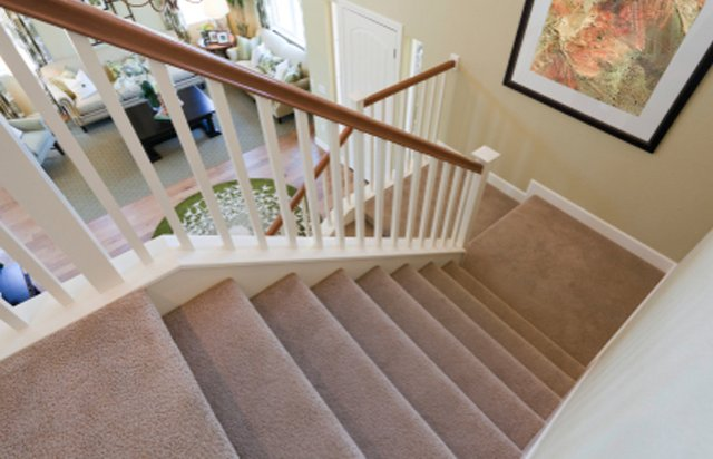 Stair Carpet Quotes