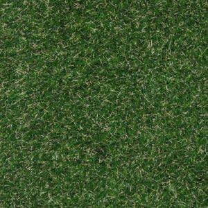 Easy Lawn - £21.99